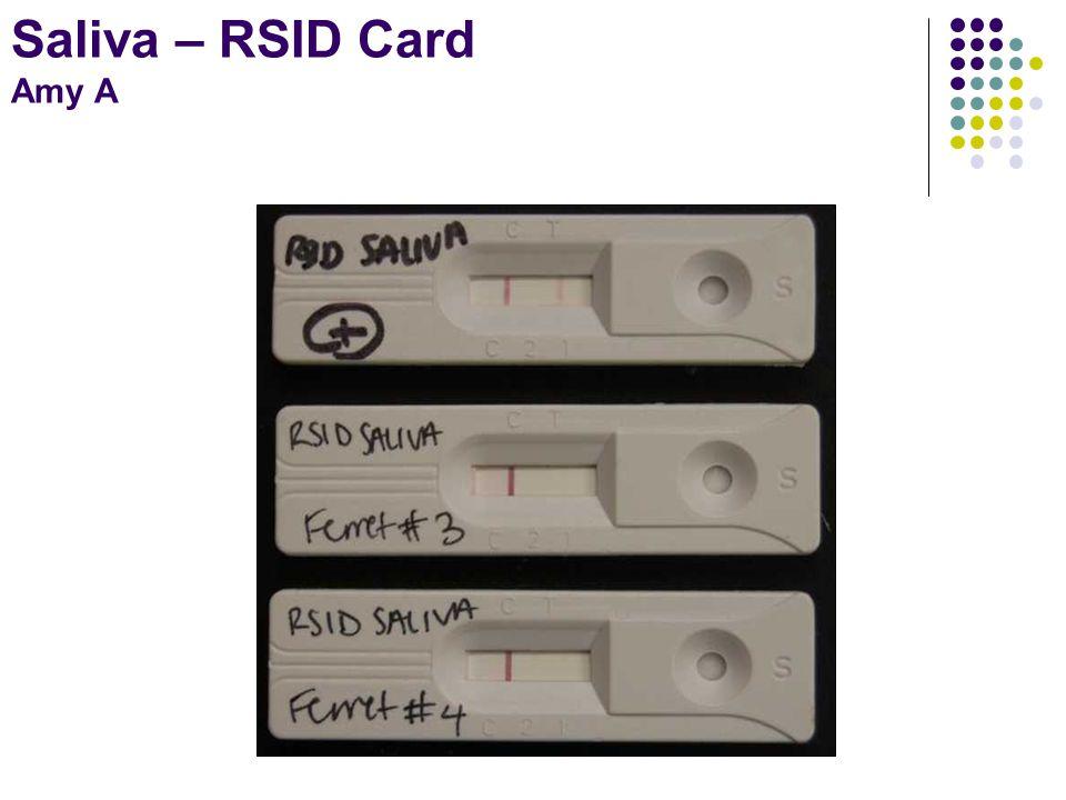 Saliva – RSID Card Amy A