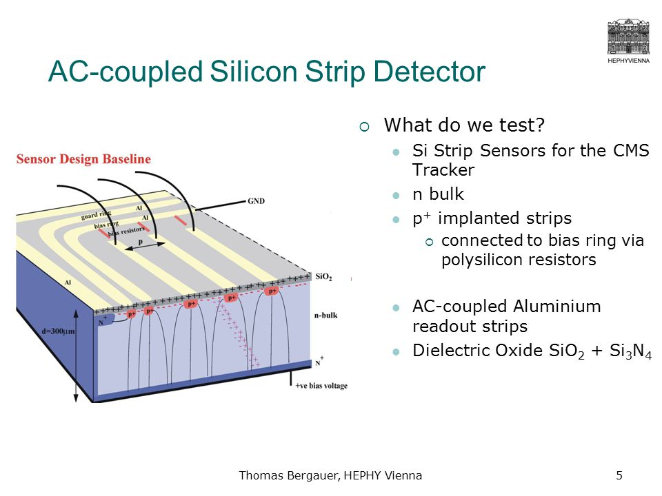 Thomas Bergauer, HEPHY Vienna5 AC-coupled Silicon Strip Detector  What do we test.