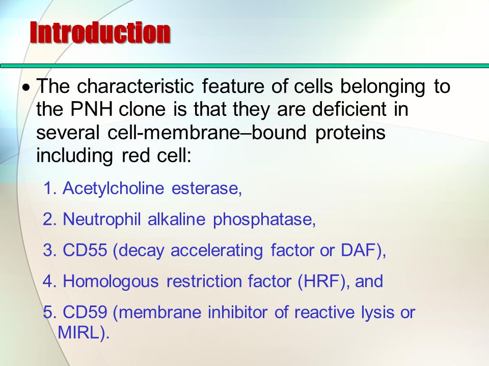 Introduction  The characteristic feature of cells belonging to the PNH clone is that they are deficient in several cell-membrane–bound proteins inclu