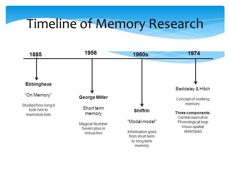 Timeline of Memory Research Ebbinghaus On Memory Studied how long it took him to memorize lists George Miller Short term memory Magical Number Seven plus or minus two Shiffrin Modal model Information goes from short term to long term memory Baddeley & Hitch Concept of working memory.