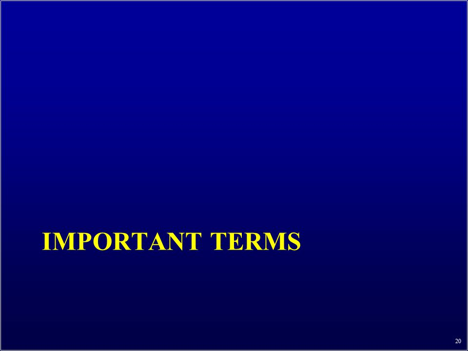 IMPORTANT TERMS 20