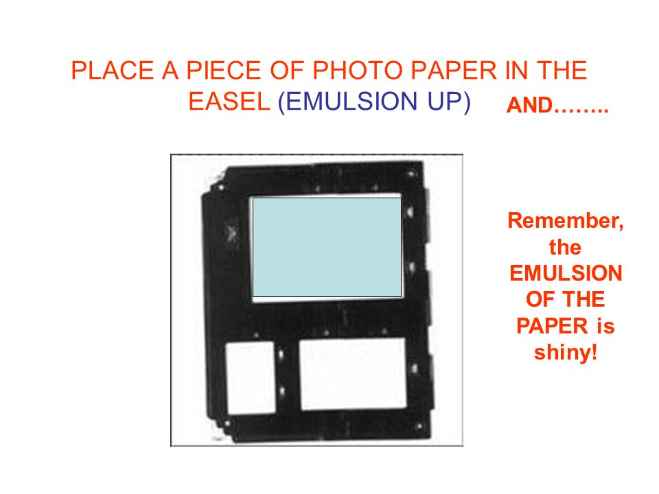 PLACE A PIECE OF PHOTO PAPER IN THE EASEL (EMULSION UP) Remember, the EMULSION OF THE PAPER is shiny.
