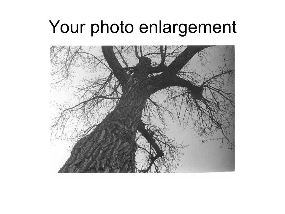 Your photo enlargement