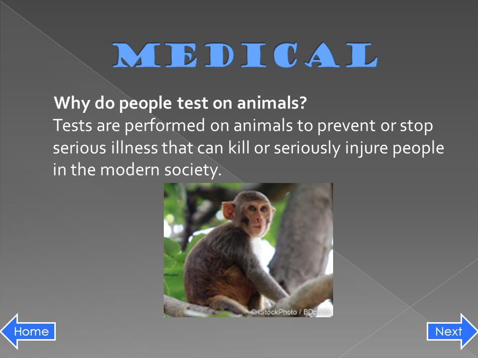 Why do people test on animals.