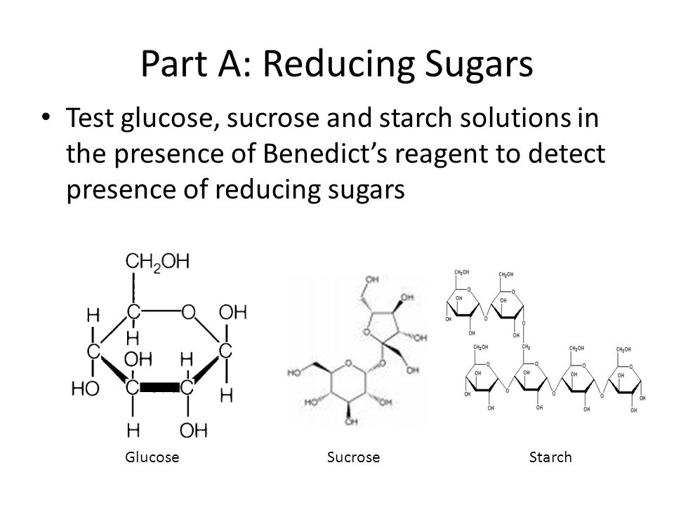 Part A: Reducing Sugars Test glucose, sucrose and starch solutions in the presence of Benedict's reagent to detect presence of reducing sugars GlucoseSucroseStarch