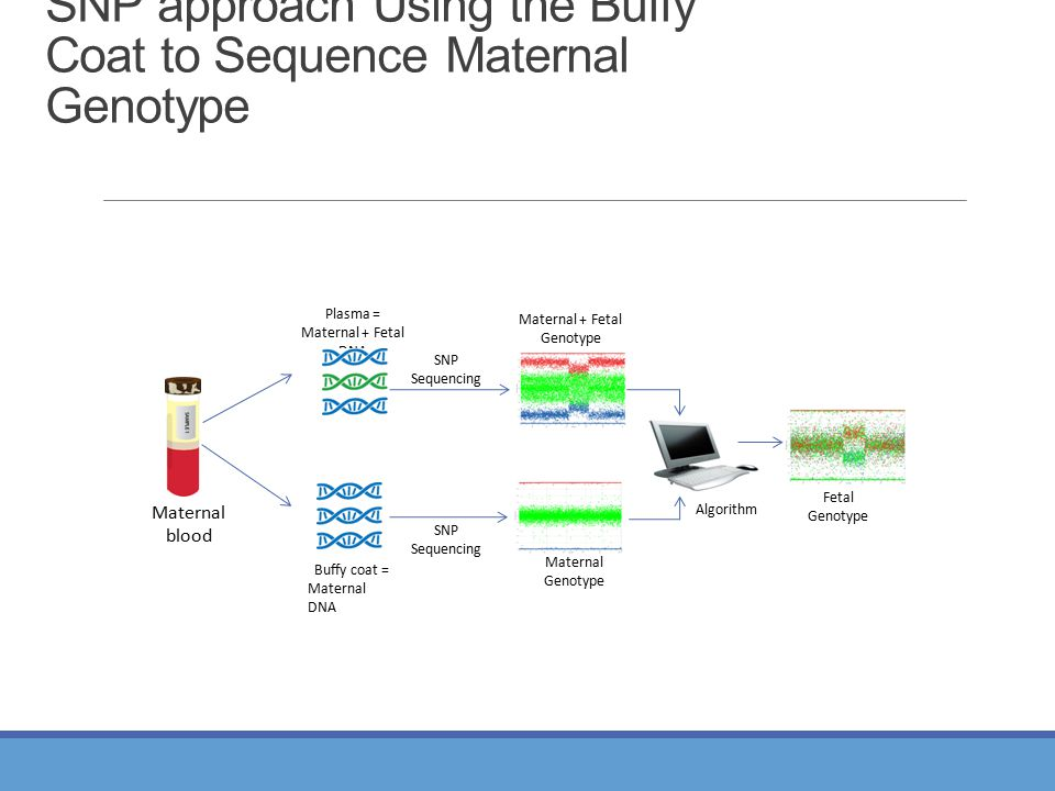 Buffy coat = Maternal DNA Plasma = Maternal + Fetal DNA SNP Sequencing SNP Sequencing Maternal Genotype Maternal + Fetal Genotype Fetal Genotype Mater