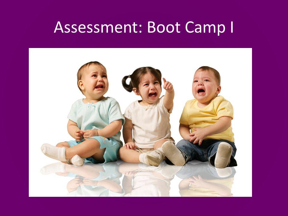 Assessment: Boot Camp I