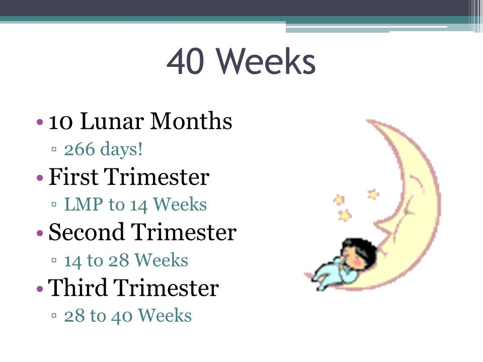 40 Weeks 10 Lunar Months ▫266 days.