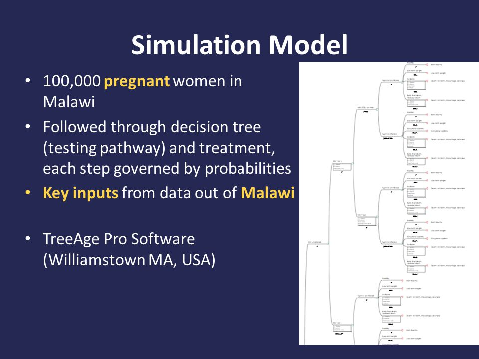 Simulation Model 100,000 pregnant women in Malawi Followed through decision tree (testing pathway) and treatment, each step governed by probabilities Key inputs from data out of Malawi TreeAge Pro Software (Williamstown MA, USA)