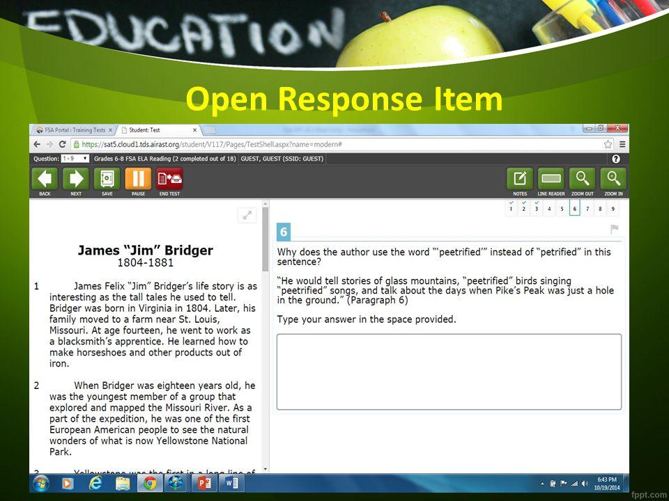 Open Response Item