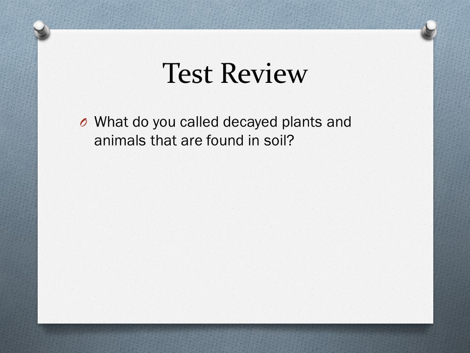 Test Review O What do you called decayed plants and animals that are found in soil?