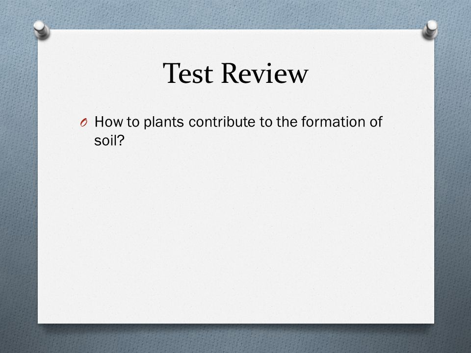 Test Review O How to plants contribute to the formation of soil?