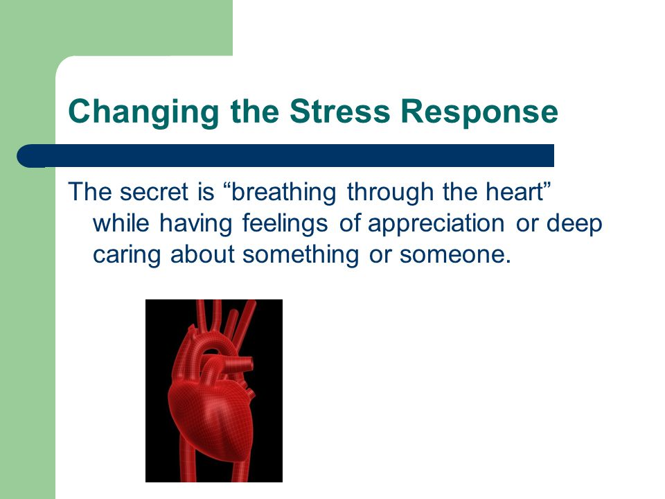 Changing the Stress Response The secret is breathing through the heart while having feelings of appreciation or deep caring about something or someone.