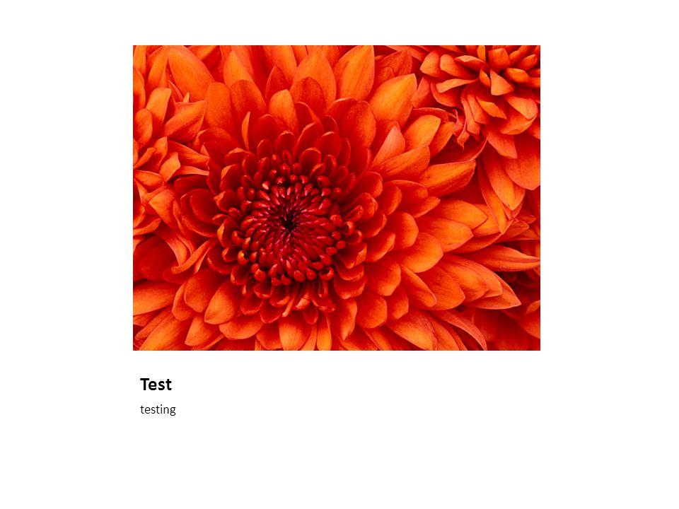 Test testing
