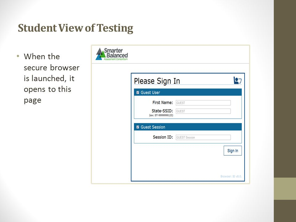 Student View of Testing When the secure browser is launched, it opens to this page
