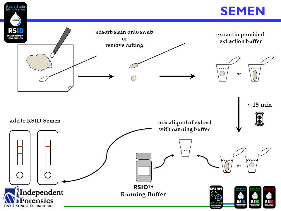SPERM HYLITER SEMEN ~ 15 min RSID TM Running Buffer mix aliquot of extract with running buffer add to RSID-Semen adsorb stain onto swab or remove cutting extract in provided extraction buffer or