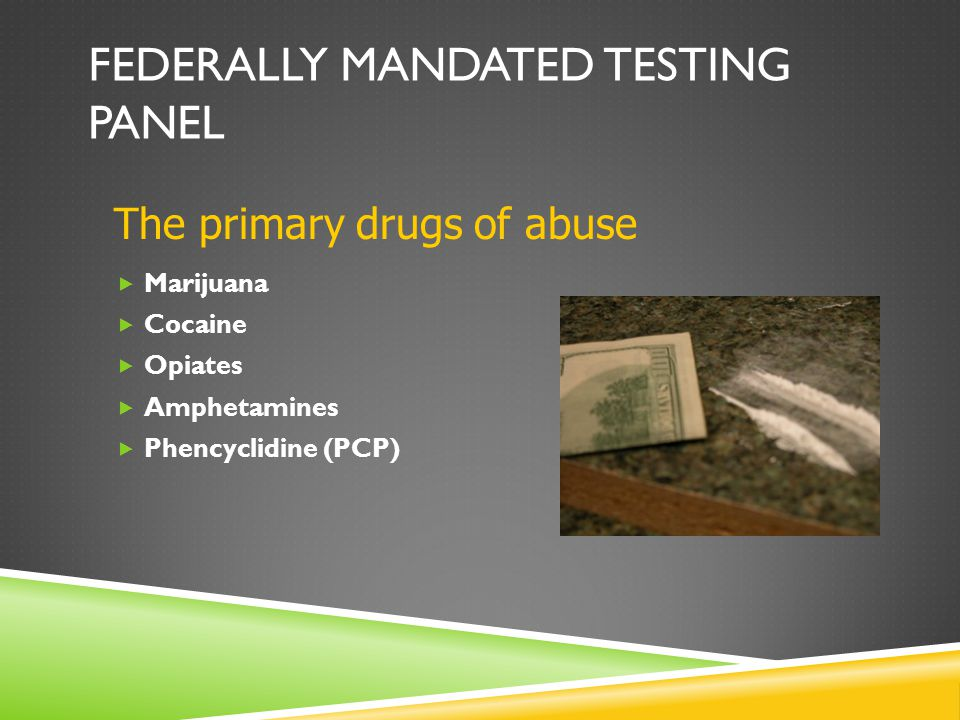 FEDERALLY MANDATED TESTING PANEL  Marijuana  Cocaine  Opiates  Amphetamines  Phencyclidine (PCP) The primary drugs of abuse