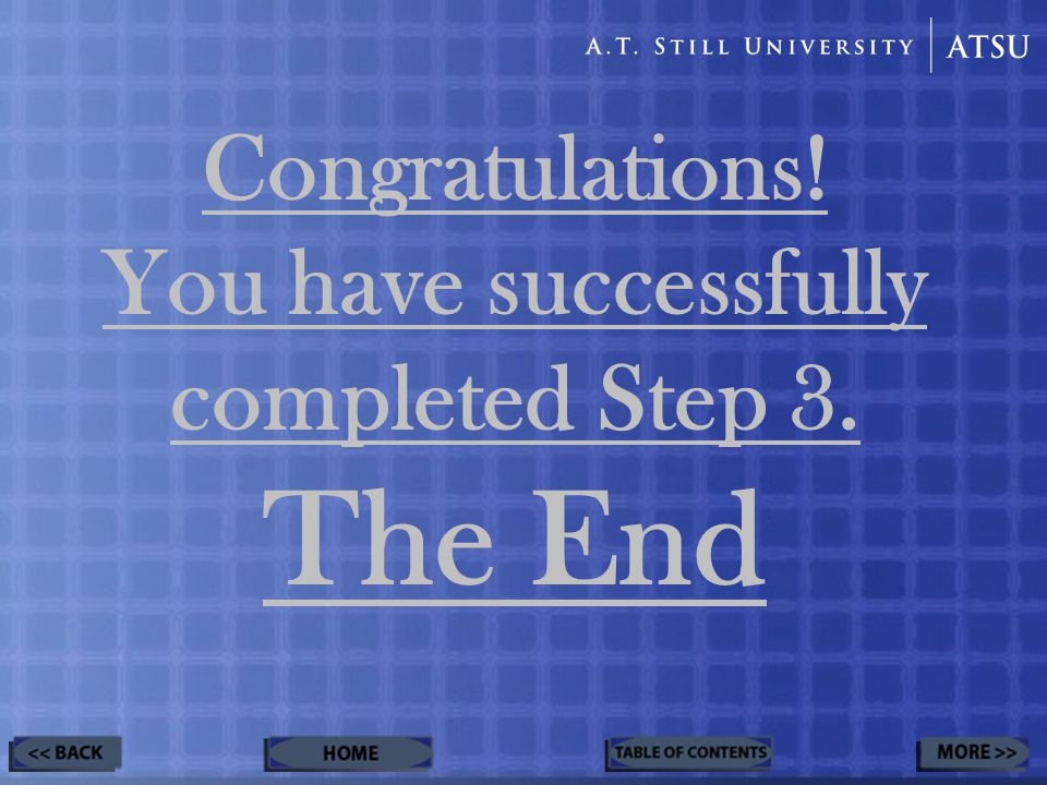 Congratulations! You have successfully completed Step 3. The End