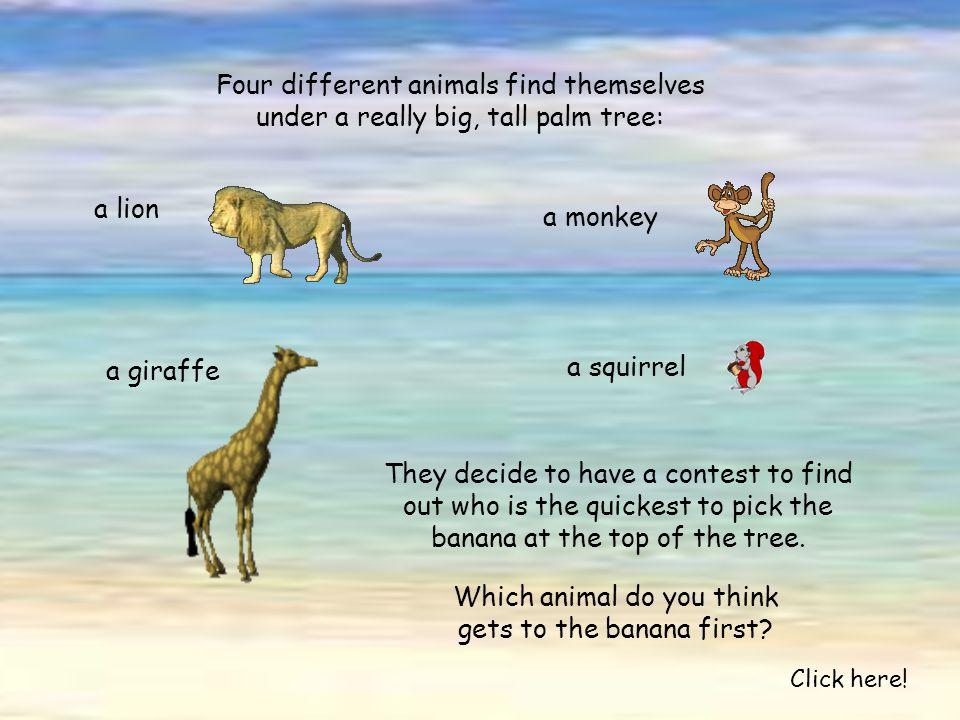 Test de la banane: Click here!