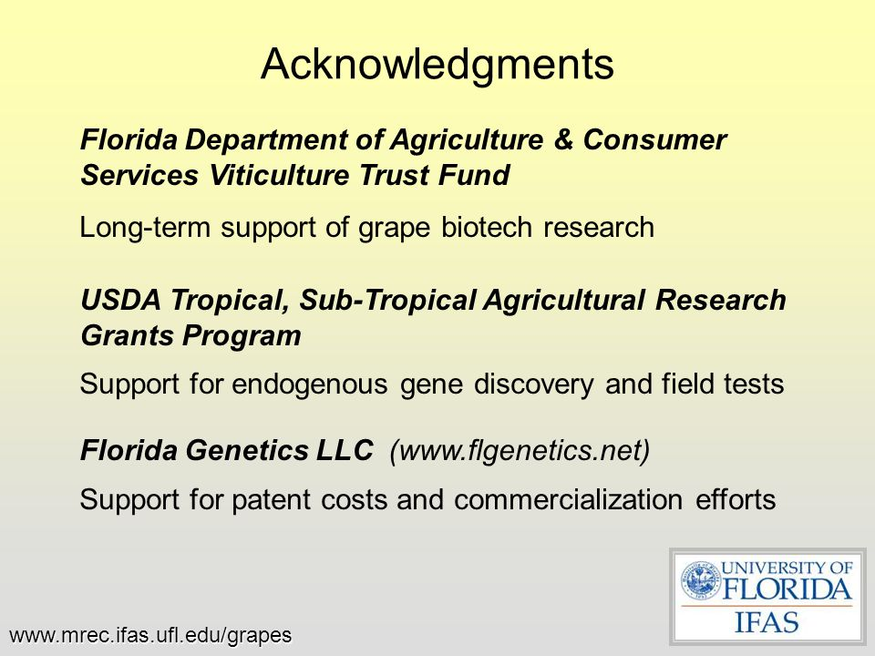 Acknowledgments Florida Department of Agriculture & Consumer Services Viticulture Trust Fund Long-term support of grape biotech research USDA Tropical