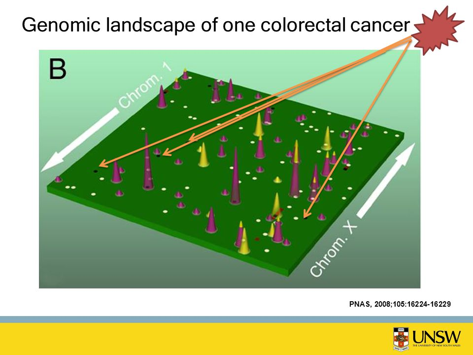 Genomic landscape of one colorectal cancer PNAS, 2008;105:16224-16229