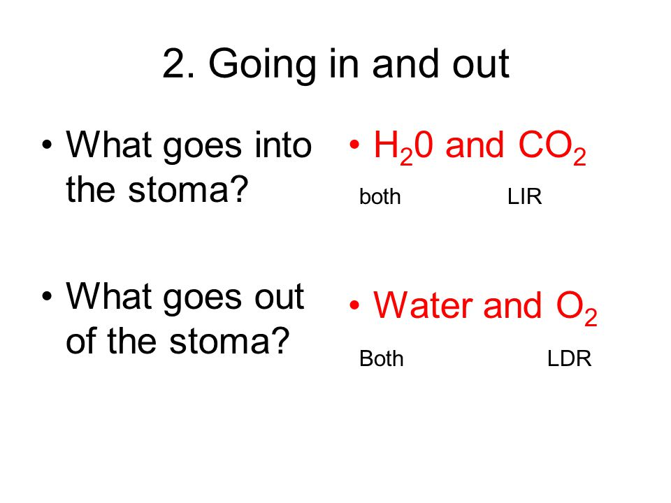 5.Where does the oxygen come from.