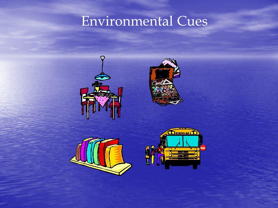 Environmental Cues