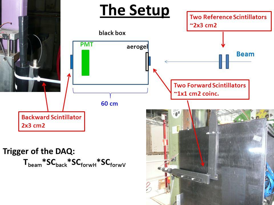The Setup Beam Backward Scintillator 2x3 cm2 Two Forward Scintillators ~1x1 cm2 coinc.