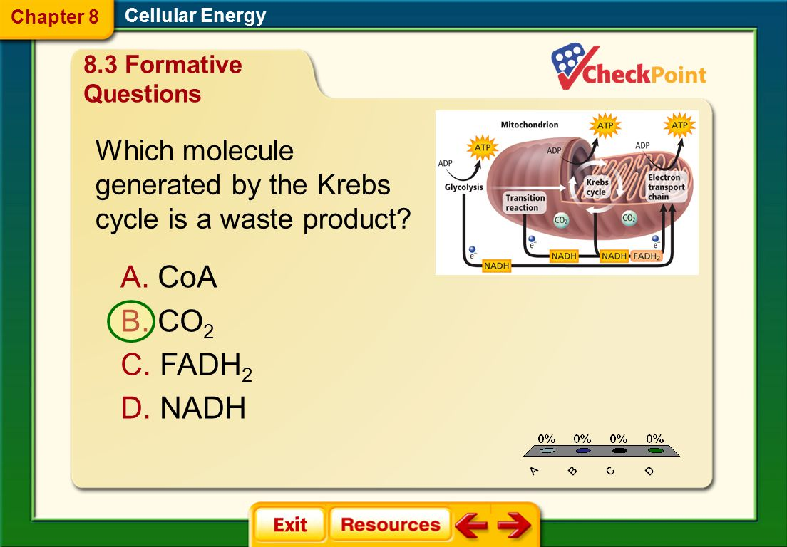 1.A 2. B 3. C FQ 11 Cellular Energy Chapter 8 A. glycolysis B.