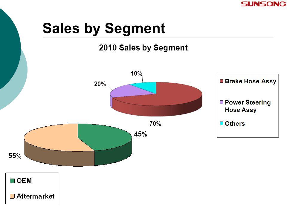 Sales by Segment 2010 Sales by Segment