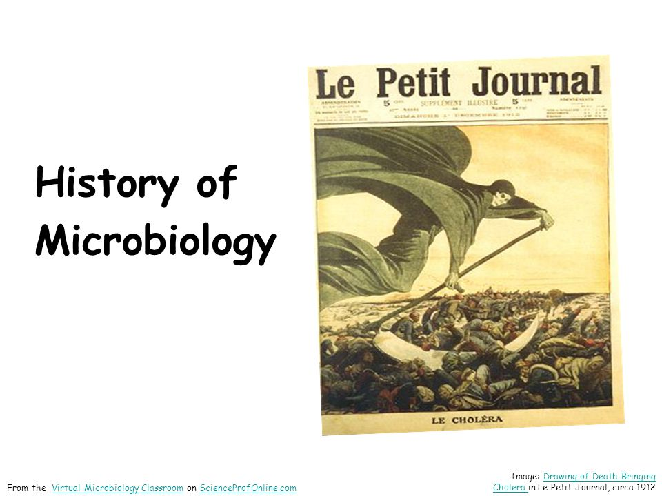 History of Microbiology Image: Drawing of Death Bringing Cholera in Le Petit Journal, circa 1912Drawing of Death Bringing Cholera From the Virtual Microbiology Classroom on ScienceProfOnline.comVirtual Microbiology ClassroomScienceProfOnline.com