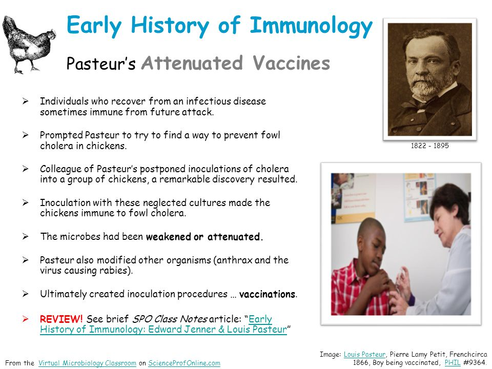Early History of Immunology Pasteur's Attenuated Vaccines  Individuals who recover from an infectious disease sometimes immune from future attack.
