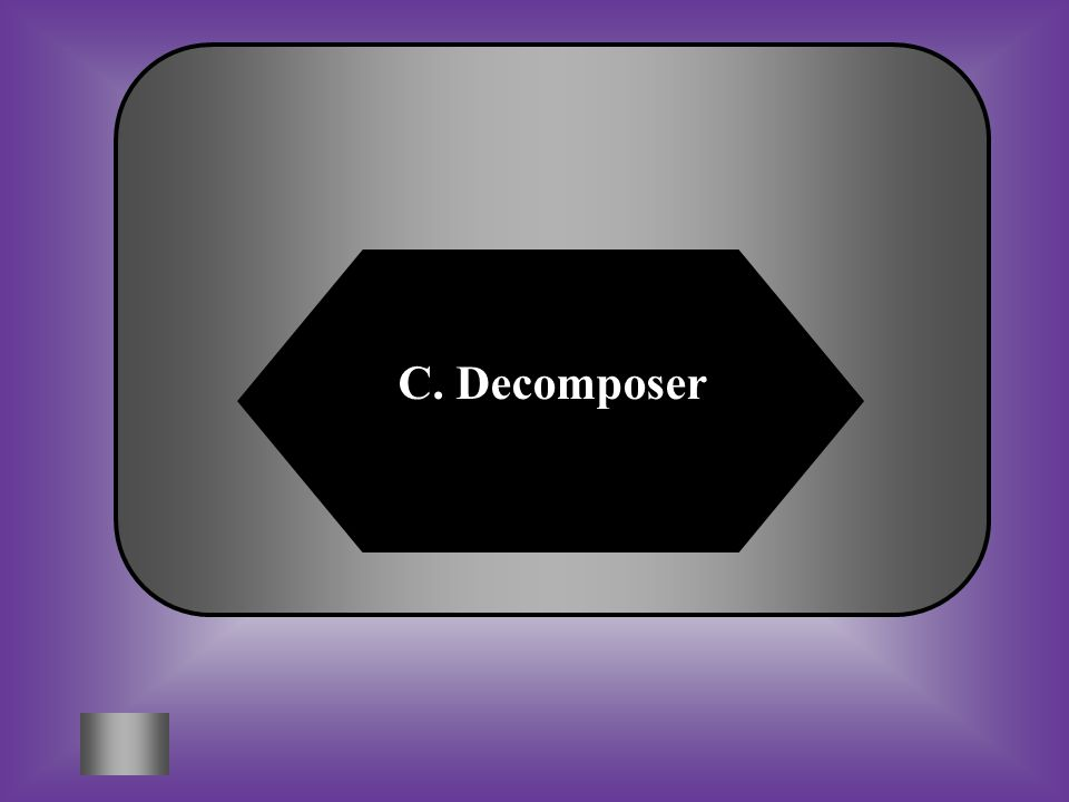A:B: Producer Consumer C:D: DecomposerNone of these What kind of organism is not shown in this diagram.