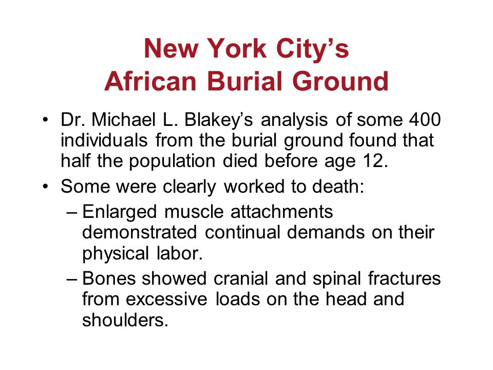 New York City's African Burial Ground Dr. Michael L.