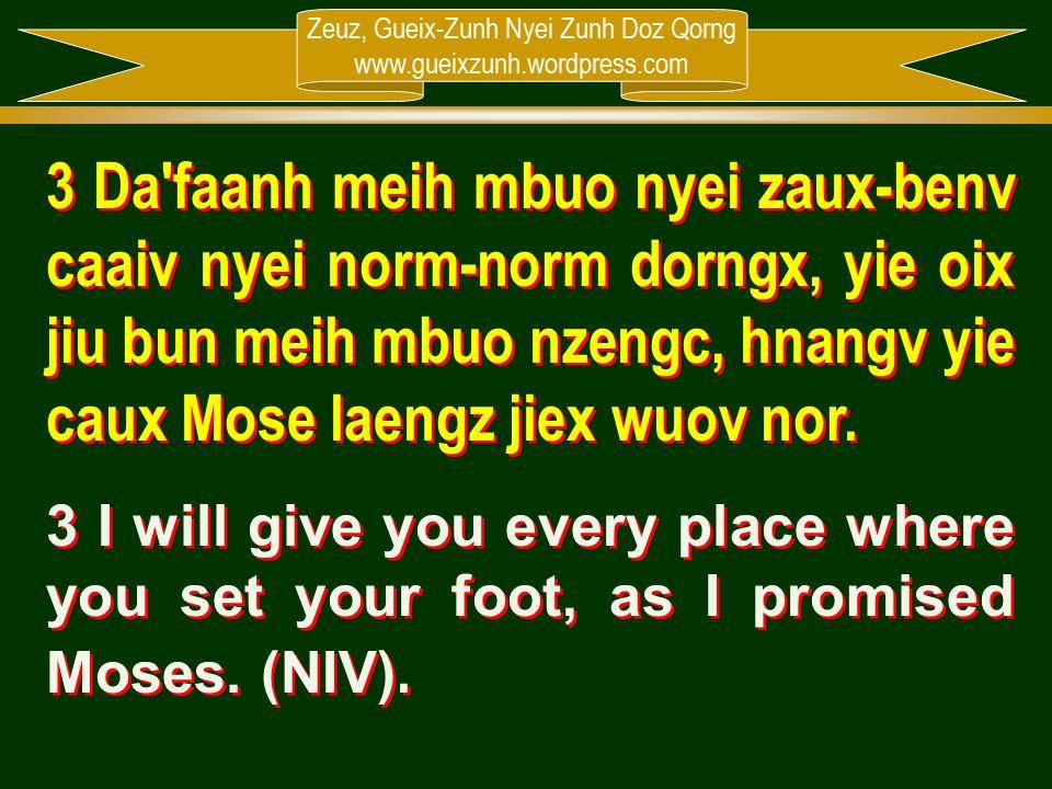 Zeuz, Gueix-Zunh Nyei Zunh Doz Qorng www.gueixzunh.wordpress.com 3 Da'faanh meih mbuo nyei zaux-benv caaiv nyei norm-norm dorngx, yie oix jiu bun meih