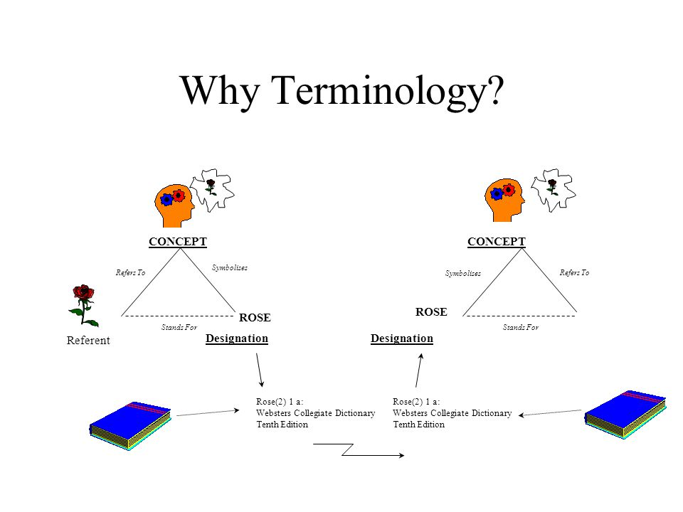 Why Terminology? CONCEPT Referent Refers To Symbolises Stands For ROSE Refers To Symbolises Stands For ROSE CONCEPT Designation Rose(2) 1 a: Websters
