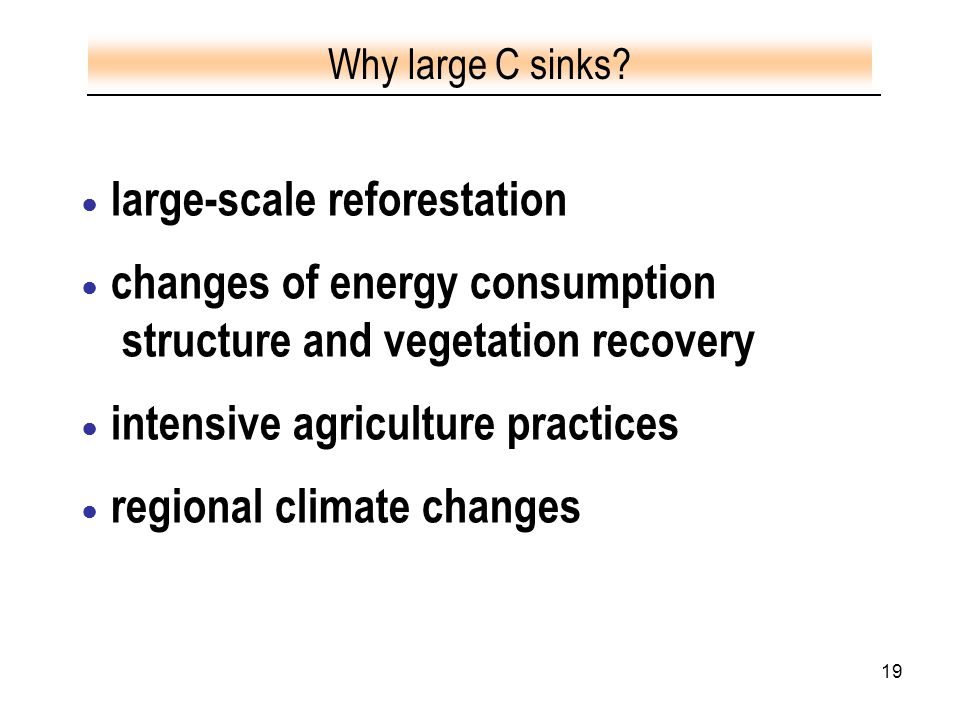 19 ● large-scale reforestation ● changes of energy consumption structure and vegetation recovery ● intensive agriculture practices ● regional climate