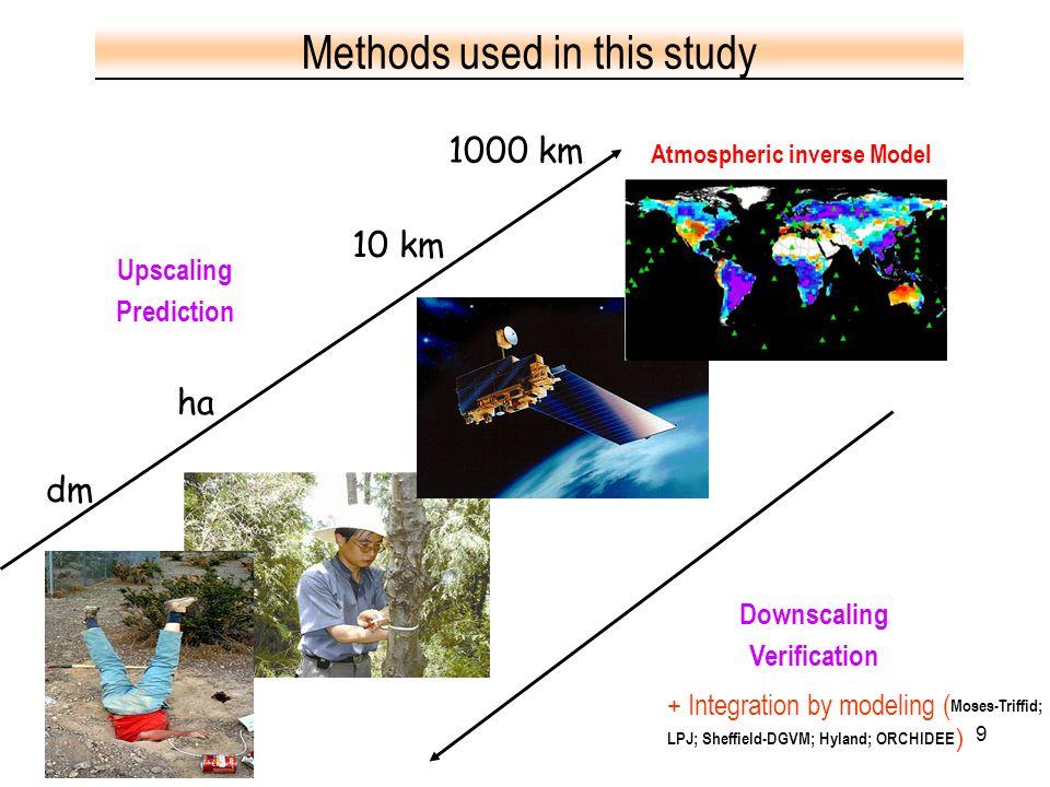 9 dm ha 10 km 1000 km Downscaling Verification Upscaling Prediction + Integration by modeling ( Moses-Triffid; LPJ; Sheffield-DGVM; Hyland; ORCHIDEE )