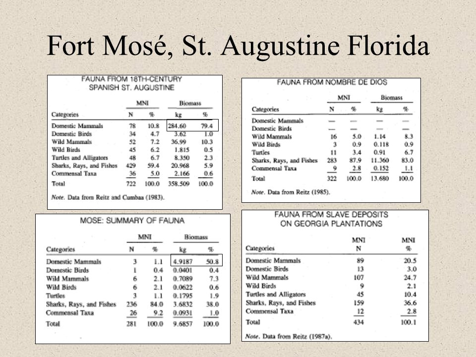 Fort Mosé, St. Augustine Florida