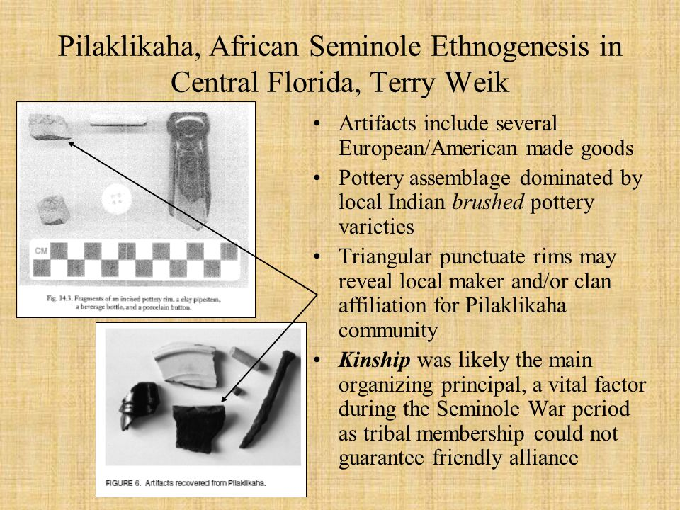 Pilaklikaha, African Seminole Ethnogenesis in Central Florida, Terry Weik Artifacts include several European/American made goods Pottery assemblage dominated by local Indian brushed pottery varieties Triangular punctuate rims may reveal local maker and/or clan affiliation for Pilaklikaha community Kinship was likely the main organizing principal, a vital factor during the Seminole War period as tribal membership could not guarantee friendly alliance