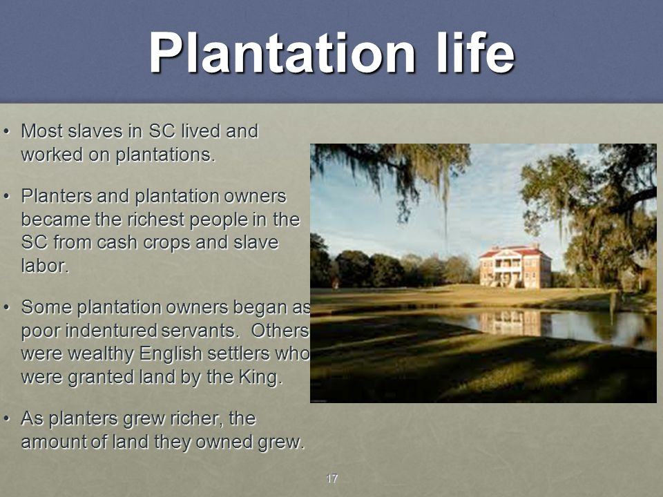17 Plantation life Most slaves in SC lived and worked on plantations.Most slaves in SC lived and worked on plantations. Planters and plantation owners
