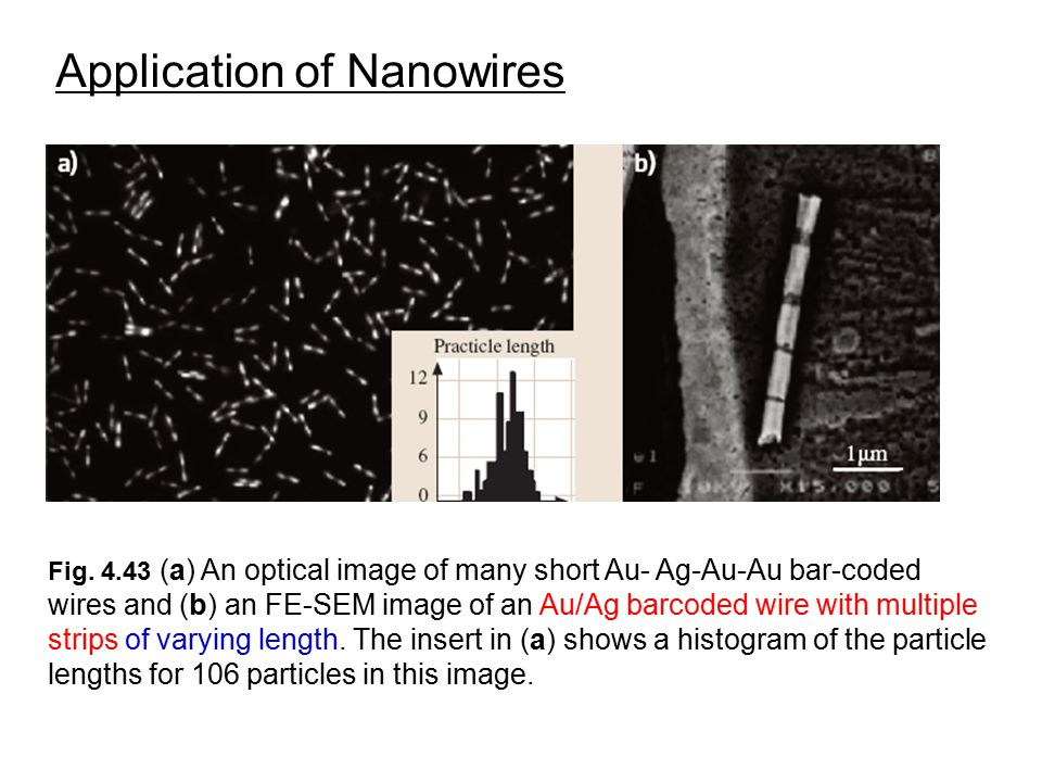 Application of Nanowires Fig. 4.43 (a) An optical image of many short Au- Ag-Au-Au bar-coded wires and (b) an FE-SEM image of an Au/Ag barcoded wire w