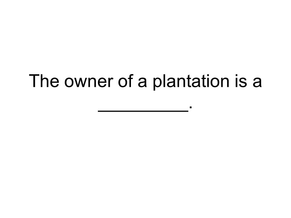 The owner of a plantation is a _________.
