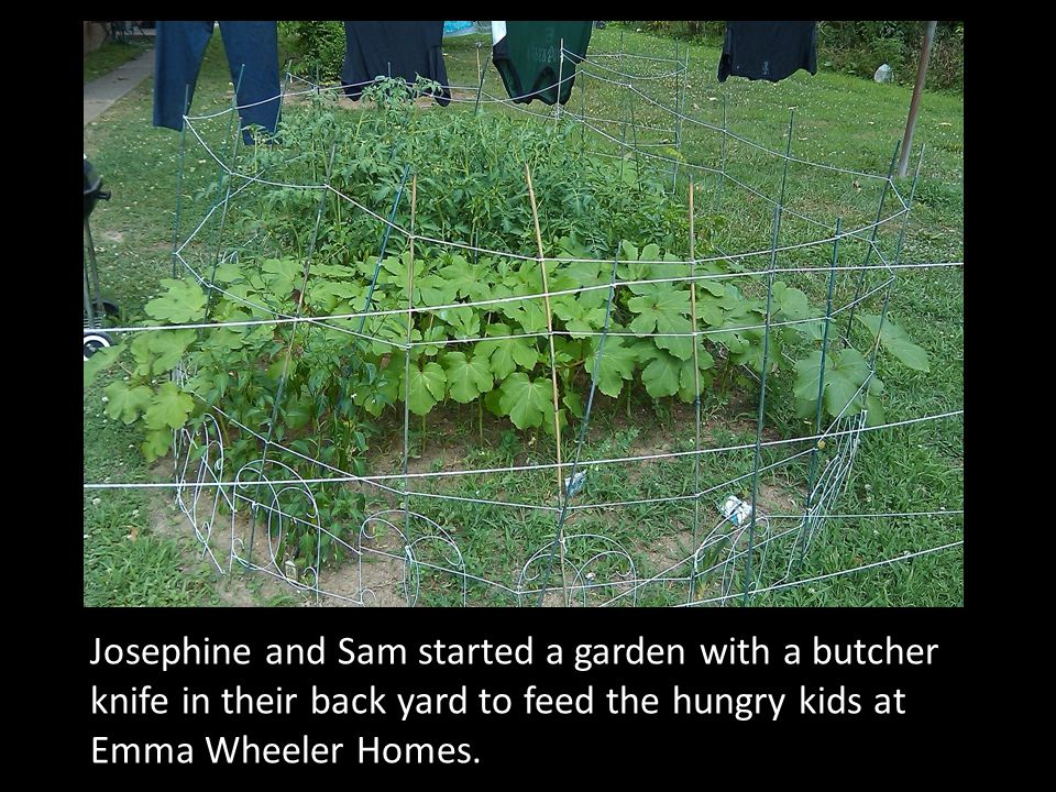 Josephine and Sam started a garden with a butcher knife in their back yard to feed the hungry kids at Emma Wheeler Homes.