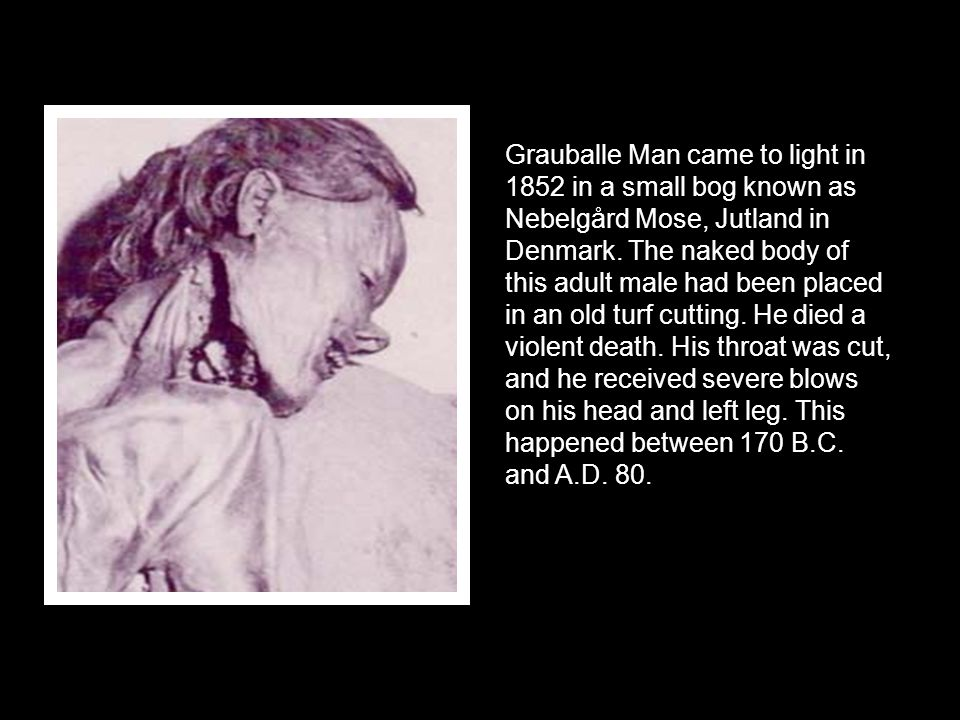 Grauballe Man came to light in 1852 in a small bog known as Nebelgård Mose, Jutland in Denmark. The naked body of this adult male had been placed in a