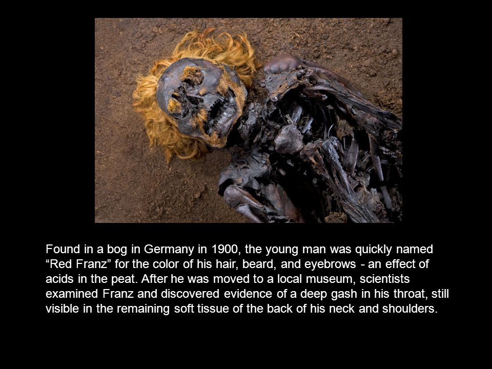"Found in a bog in Germany in 1900, the young man was quickly named ""Red Franz"" for the color of his hair, beard, and eyebrows - an effect of acids in"