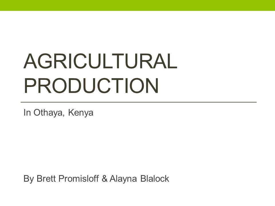 AGRICULTURAL PRODUCTION In Othaya, Kenya By Brett Promisloff & Alayna Blalock