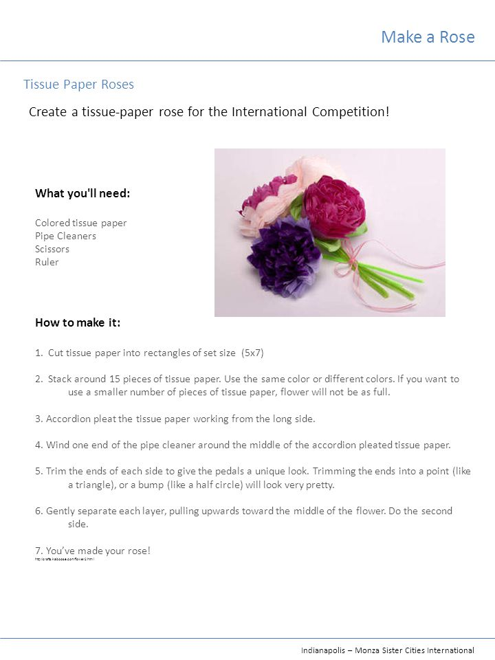 Indianapolis – Monza Sister Cities International Make a Rose Create a tissue-paper rose for the International Competition! What you'll need: Colored t