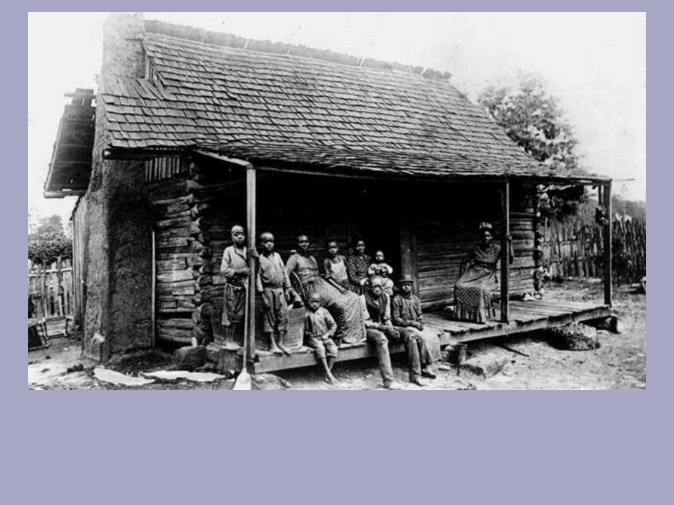 Cleveland Gazette Children of Slaves Deemed Illegitimate Volume: 05 Issue Number: 39 Page Number: 02 Date: 05/12/1888