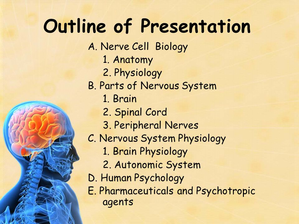 Outline of Presentation A. Nerve Cell Biology 1. Anatomy 2. Physiology B. Parts of Nervous System 1. Brain 2. Spinal Cord 3. Peripheral Nerves C. Nerv